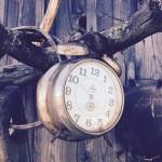 alarm-clock-1853243__340