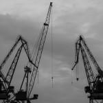 crane-1987760__340