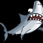 shark-2317422_1920