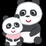 上野動物園シャンシャン生誕1周年!