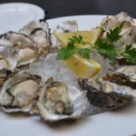 oysters-3625395_1920