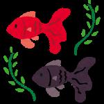 金魚(LOVE)展